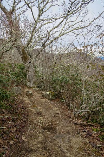 Pilot Rock Trail -- 5,080'