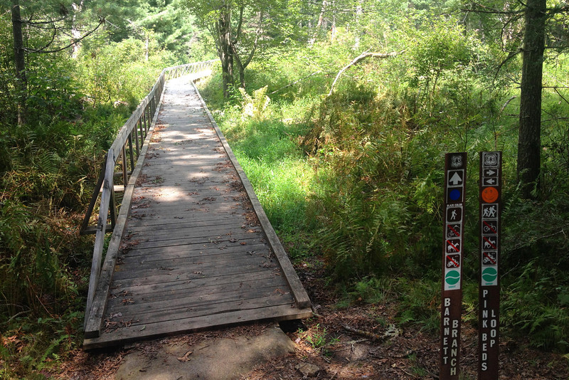 This long boardwalk crosses between the north and south portions of the loop.  Its located about a mile and a quarter from the trailhead...
