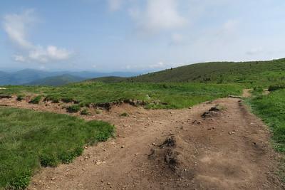 Art Loeb Spur/Art Loeb Trail Junction -- 6,080'