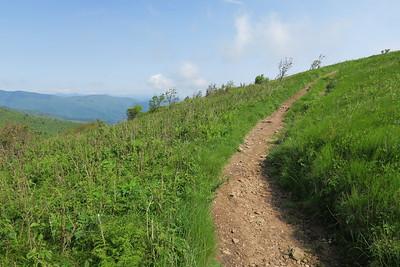 Art Loeb Spur Trail -- 6,040'