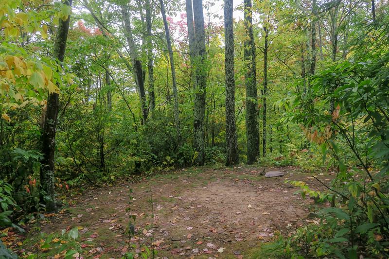 Art Loeb Trail -- 4,300'