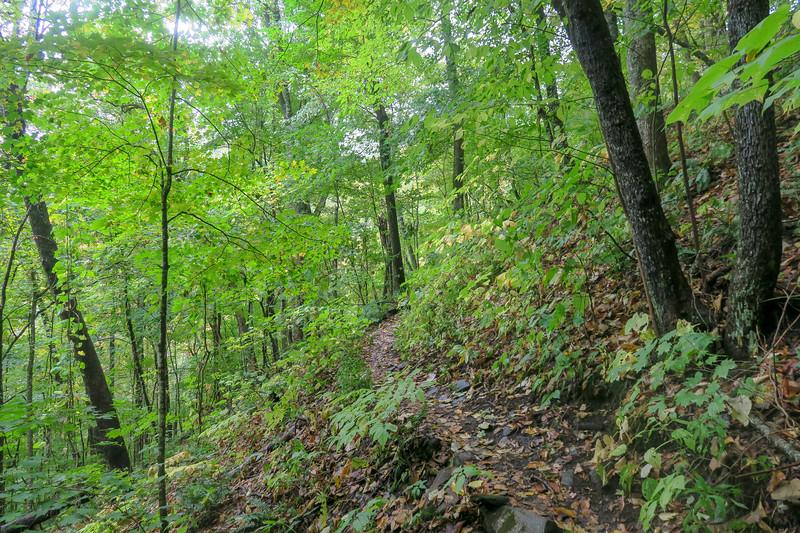 Art Loeb Trail -- 4,350'