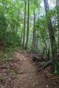 Art Loeb Trail -- 3,450'