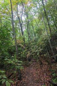 Art Loeb Trail -- 3,850'