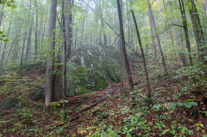 Art Loeb Trail -- 3,400'