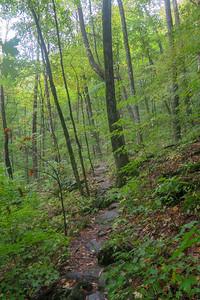 Art Loeb Trail -- 3,970'