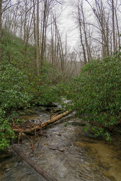 Avery Creek -- 2,460'