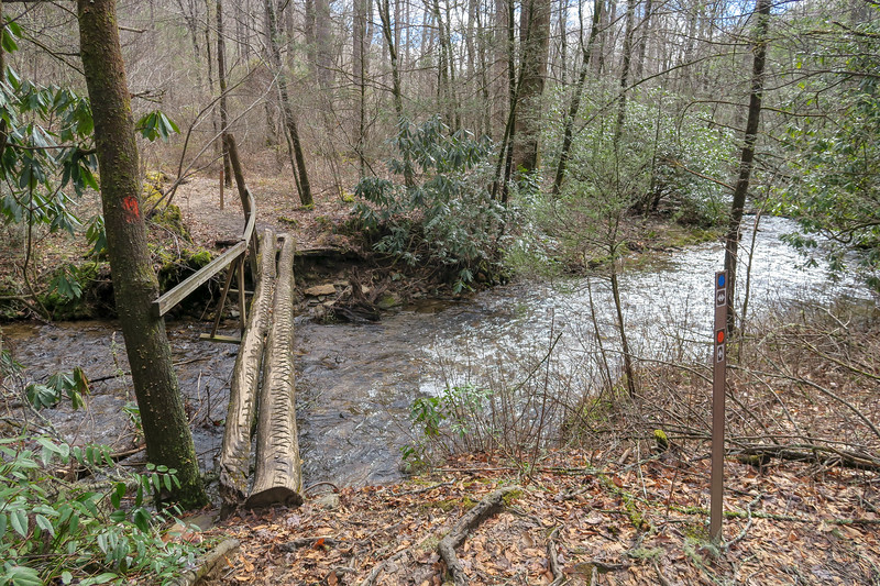 Avery Creek/Buckhorn Gap Trail Upper Junction -- 2,580'