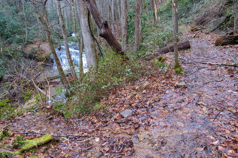 Avery Creek Trail -- 2,520'