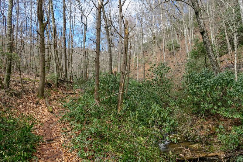 Avery Creek Trail -- 2,610'