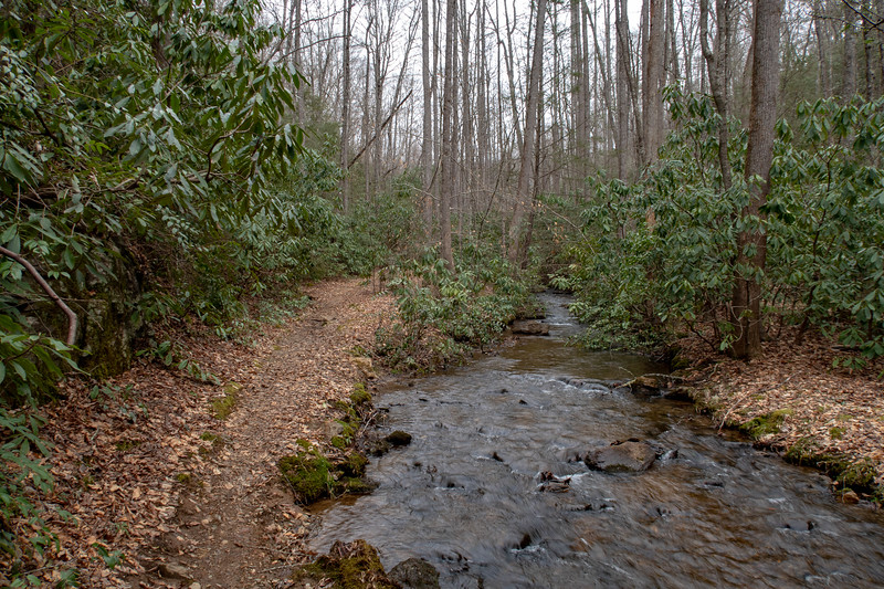 Bad Fork Trail -- 2,480'