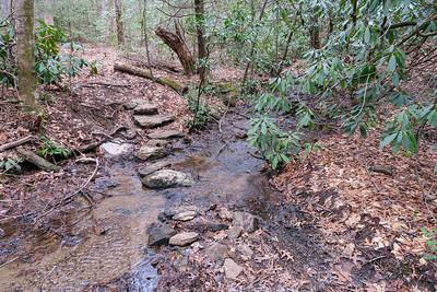 Bad Fork Trail -- 2,620'