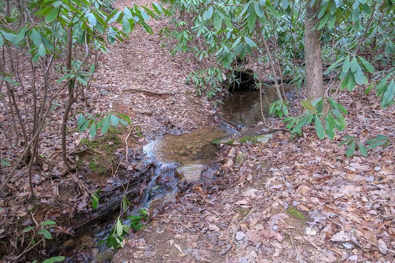 Bad Fork Trail -- 2,800'