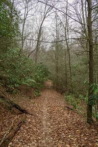 Bad Fork Trail -- 2,570'