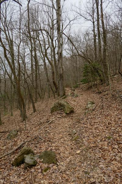 Bad Fork Trail -- 3,150'