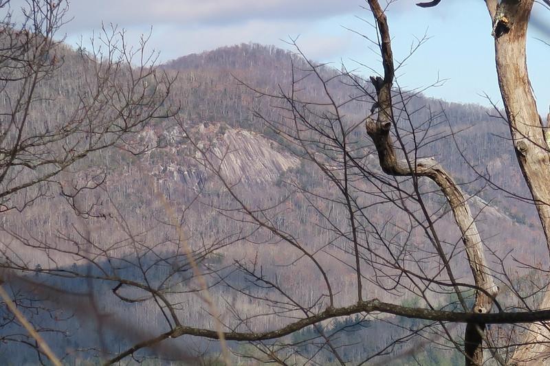 Barnett Branch Trail -- 3,580'