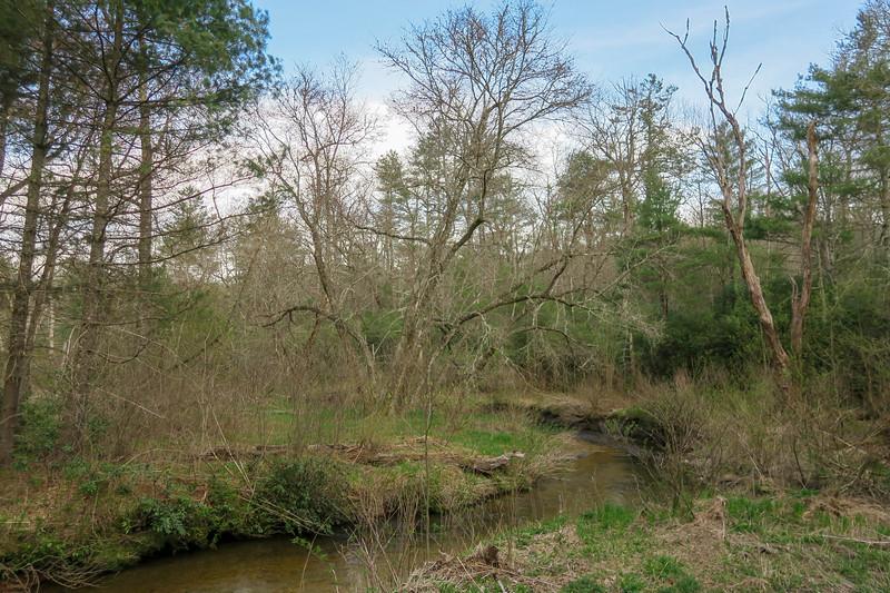 South Fork Mills River -- 3,180'