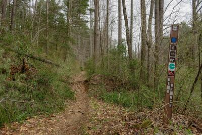 Bear Branch Trail -- 2,440'