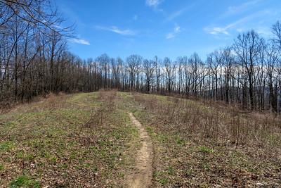 Bennett Gap Trail -- 3,580'