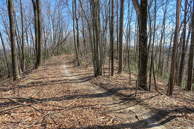 Bennett Gap Trail -- 3,540'
