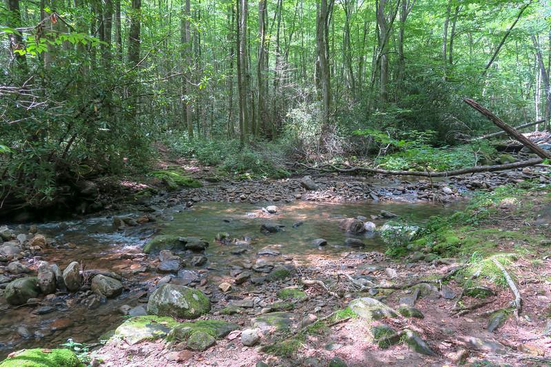 Big Creek Trail -- 2,640'