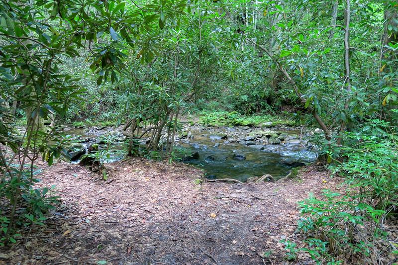 Big Creek Trail -- 2,700'