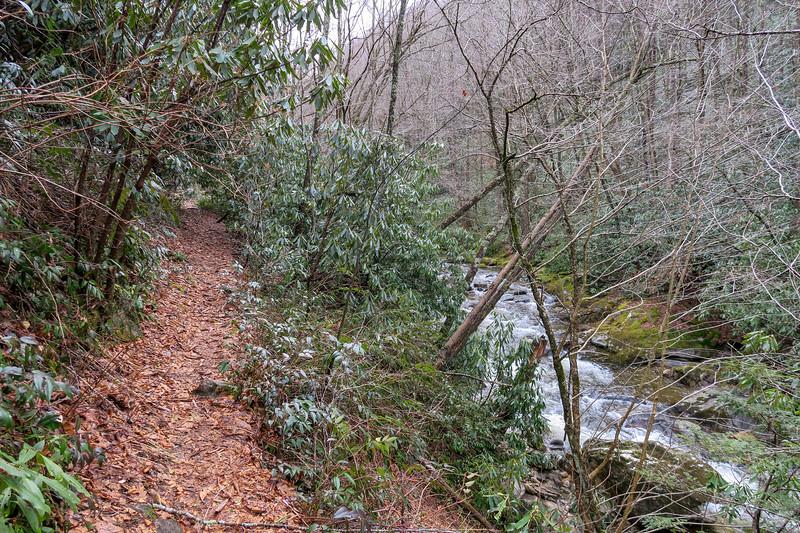 Big East Fork Trail -- 3,620'