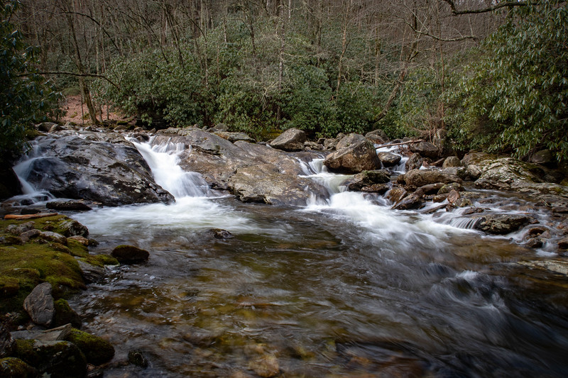 East Fork Pigeon River/Greasy Cove Prong Confluence -- 3,950'
