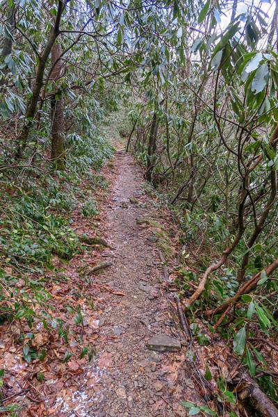 Big East Fork Trail -- 3,820'