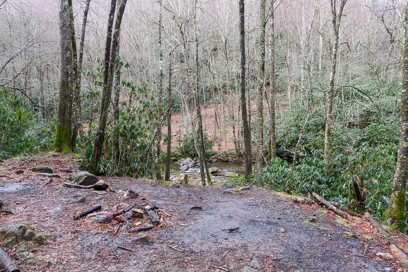 Big East Fork/Bridges Cap Gap/Greasy Cove Trail Junction -- 3,960'