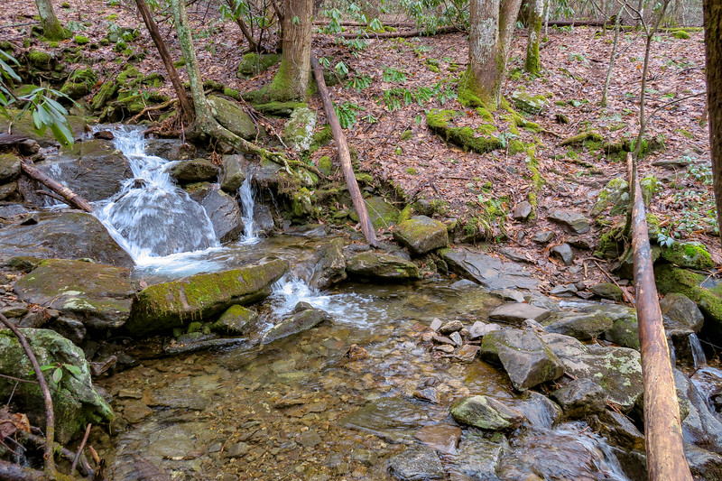 Big East Fork Trail @ Rocky Cove -- 3,520'