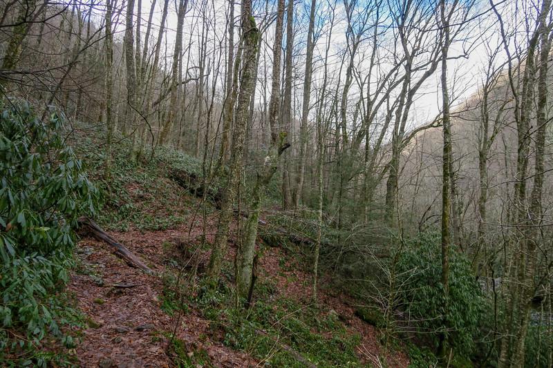 Big East Fork Trail -- 3,910'