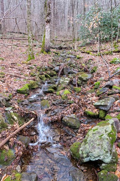 Big East Fork Trail -- 3,450'