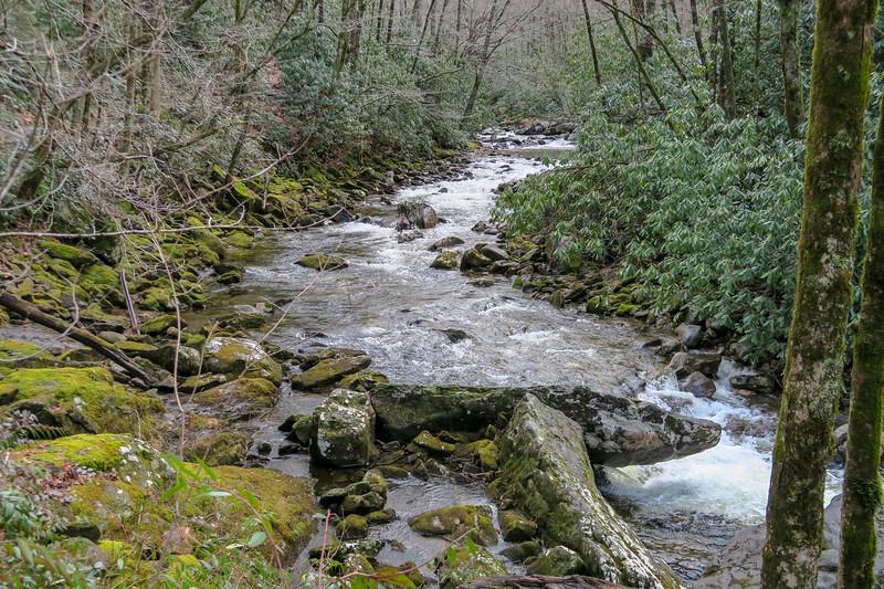 Big East Fork Trail -- 3,660'
