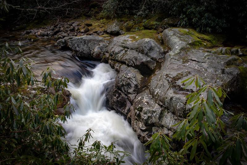 Big East Fork Trail -- 3,720'