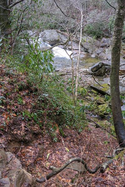 Big East Fork Trail -- 3,590'