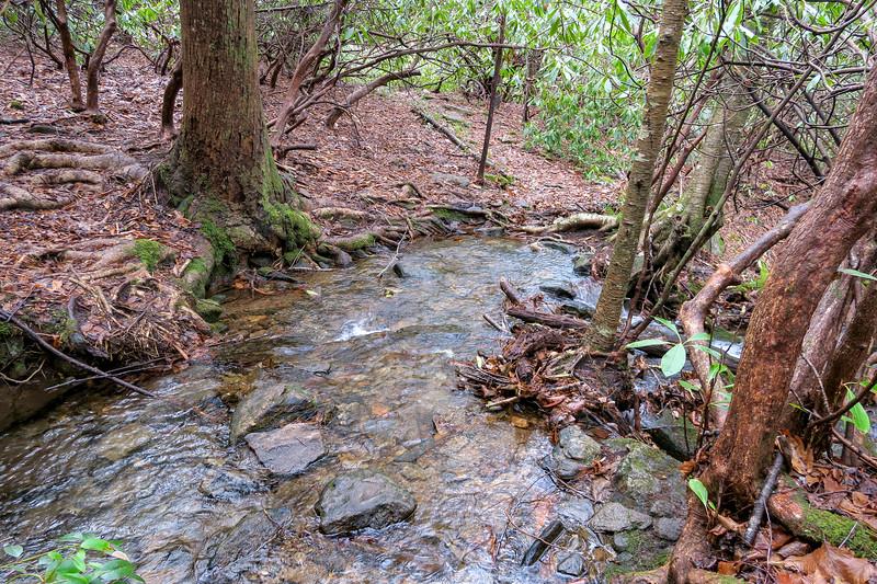 Big East Fork Trail -- 3,550'