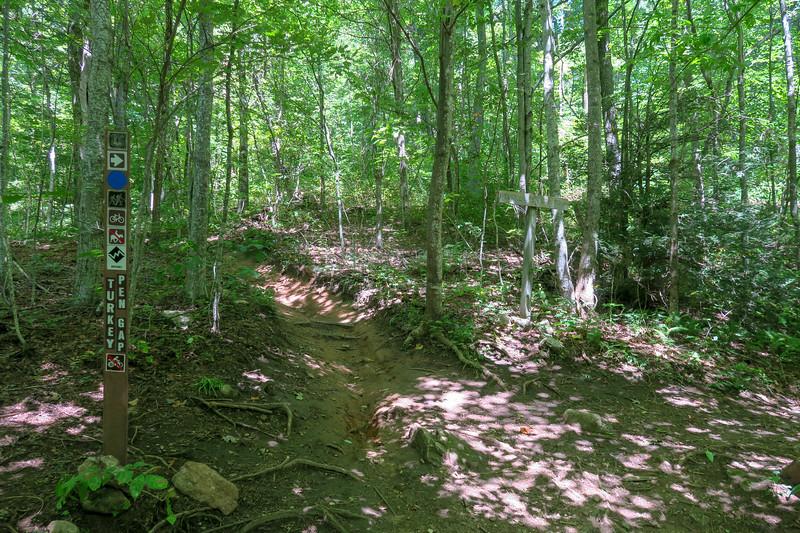 Black Mountain/Turkeypen Gap Trail Junction -- 4,120'