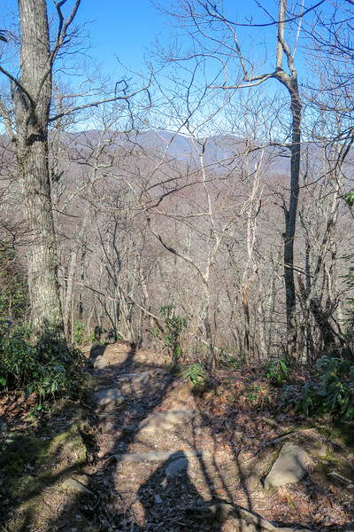 Black Mountain Trail -- 3,960'