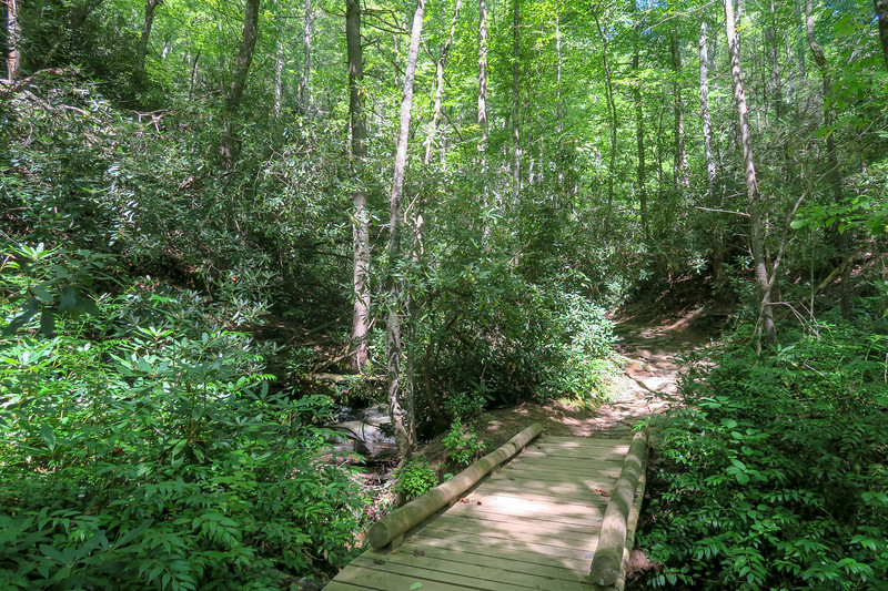 Black Mountain Trail -- 2,500'