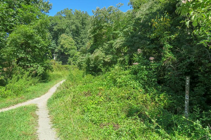 Black Mountain Trailhead -- 2,150'