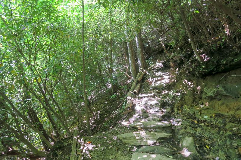 Black Mountain Trail -- 3,060'