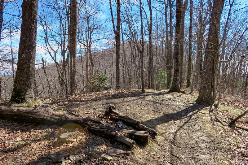 Black Mountain Trail -- 3,920'