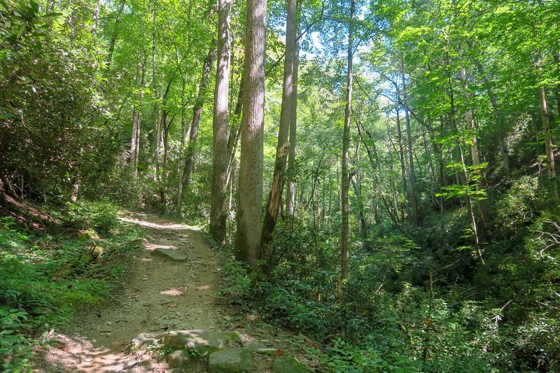 Black Mountain Trail -- 2,400'