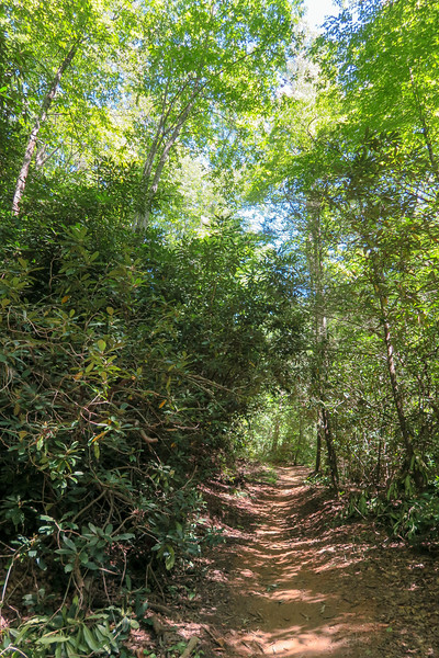 Black Mountain Trail -- 2,550'