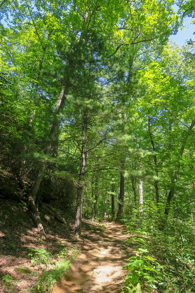 Black Mountain Trail -- 3,000'