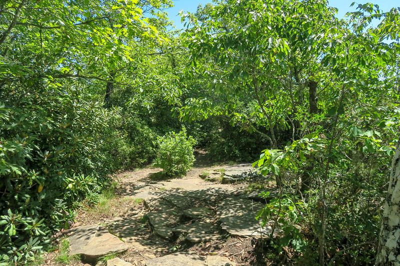 Black Mountain Ridge Trail -- 4,000'