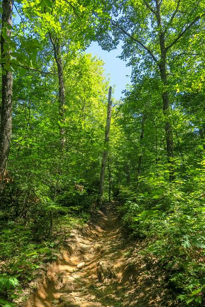 Black Mountain Trail -- 3,400'