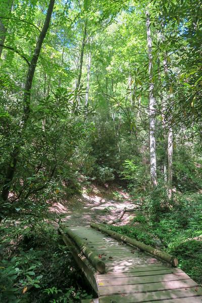 Black Mountain Trail -- 2,360'