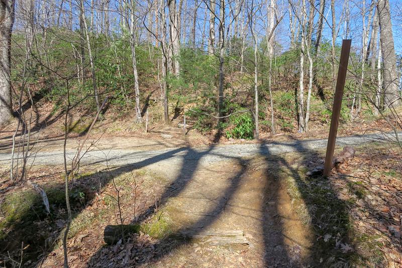 Black Mountain Trail @ Buckhorn Gap (Buckhorn Gap Trail) -- 3,550'